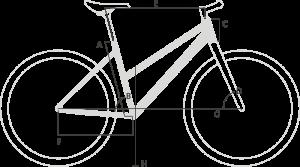 Geometri Winora